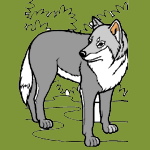 Wolves coloring pages for kids