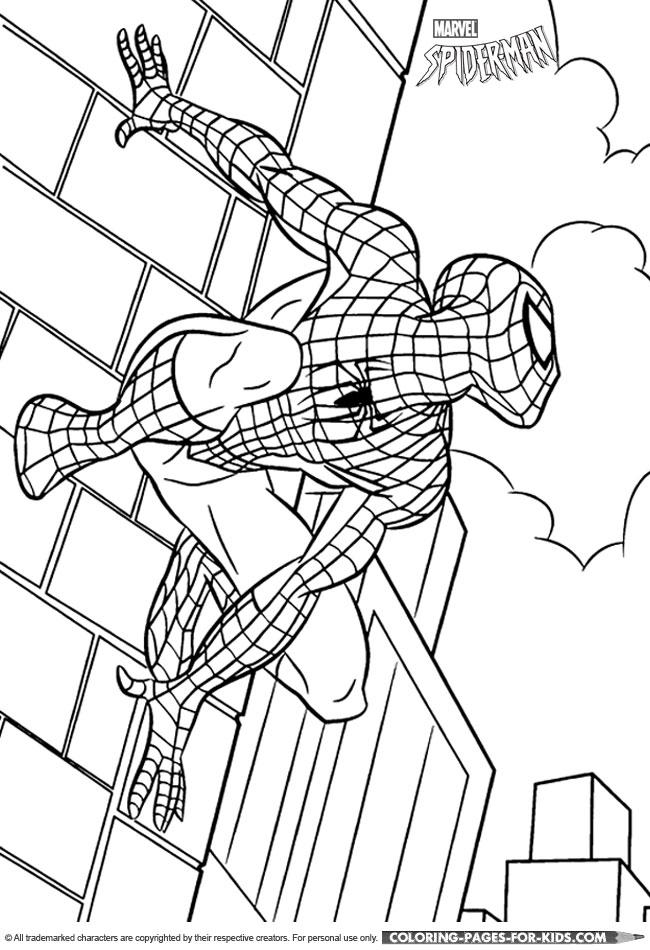 SpiderMan Coloring SpiderMan